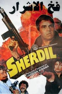Sher Dil  - Sher Dil