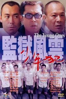 Jian yu feng yun zhi shao nian fan