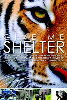Give Me Shelter  - Give Me Shelter
