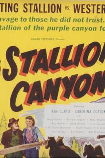 Stallion Canyon