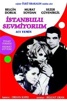Istanbul'u sevmiyorum