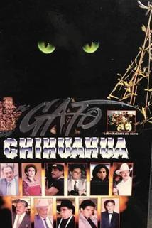 El gato de Chihuahua
