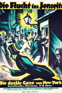 Die Flucht ins Jenseits oder Die dunkle Gasse von New York